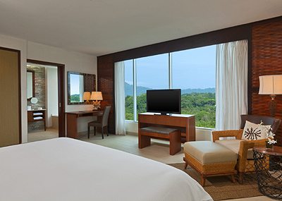 Deluxe King Green View Room